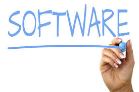 Independent Software Consultants